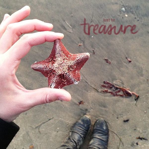 Hunt for Treasures on the Beach, as part of a Local's City Guide to Half Moon Bay // WeAreAdventure.us